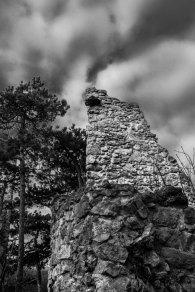 stein-alt11